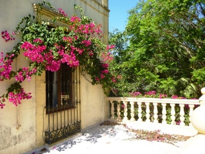 CH-1209-CC*: Finca for sale in Denia